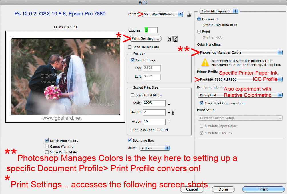 PHOTOSHOP MANAGES COLORS Click For Bigger File